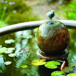 Best Placement For a Water Feature in Your Feng Shui Garden