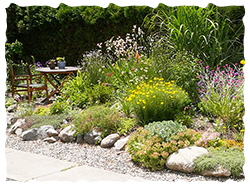 Photo Source: Okanagan Xeriscape Assoc.